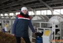СПК «Свитязянка-2003» доказал молочное лидерство на деле, благодаря формуле 4К — кадры, корма, корова, комфорт