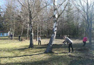 Территорию детского оздоровительного лагеря «Вясёлка» приводят в порядок