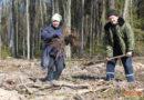 В рамках «Недели леса» юные и взрослые кореличчане сделали малую родину краше