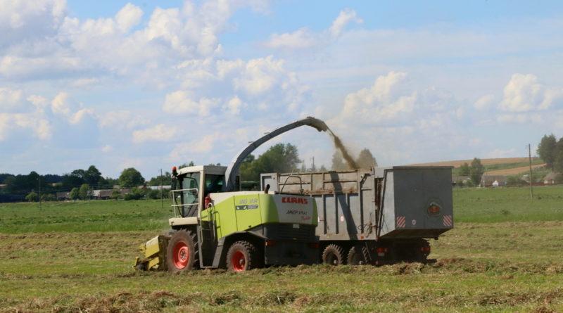 Кореличский район удерживает первое место на Гродненщине на втором укосе трав