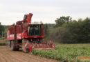 Аграрии Кореличчины — в лидерах области по темпам сева озимых зерновых культур