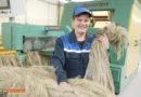 ОАО «Кореличи-Лен» экспортирует продукцию в Китай и Россию и радует гостей уникальной льняной куклой Ульяной
