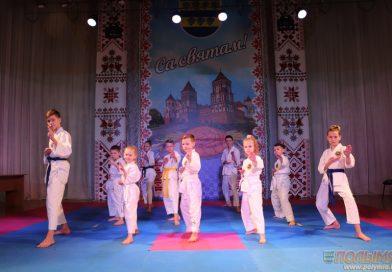 В Кореличах прошли соревнования по шотокан каратэ-до среди участников клуба восточных единоборств «Белый тигр»