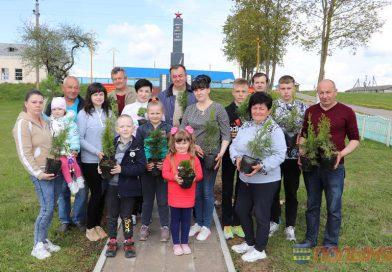 Семья Лейко заложила памятную аллею в деревне Тудорово в честь Дня семьи