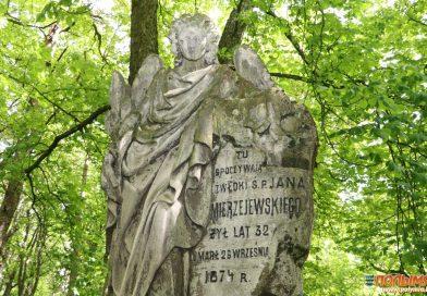 Райцевская птица Феникс, 500-летнее имение, Ворончанский Ангел: путешествуем по туристическому маршруту «Легенды Свитязи»