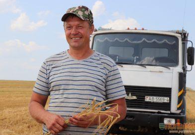 В СПК «Жуховичи» получают 70,8 центнера зерновых с гектара. Узнали, в чем секрет успеха аграриев