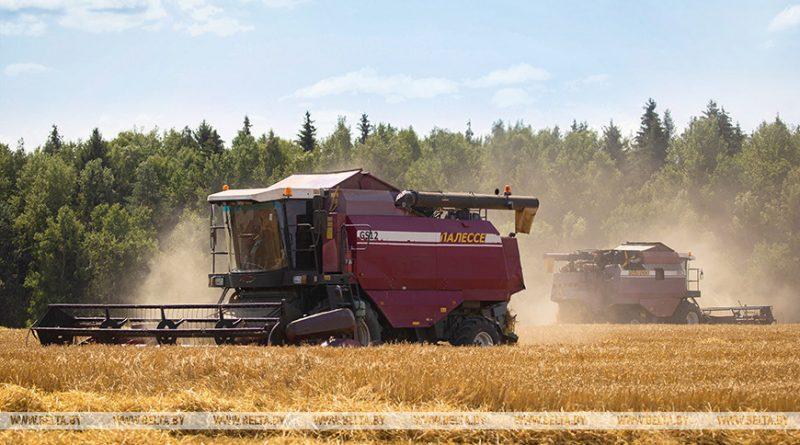 Александр Лукашенко: рост мировых цен на продовольствие должен стать дополнительной возможностью для экономики