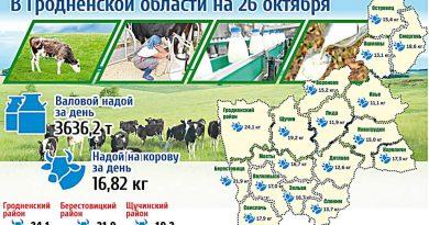 Карта молока в Гродненской области на 26 октября (инфографика)