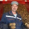 Кореличский картофель — на евразийском рынке