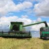 В Кореличском районе продолжается заготовка кормов, идёт массовая уборка рапса, началась жатва