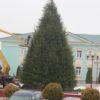 В Кореличах завершается монтаж главной ёлки района